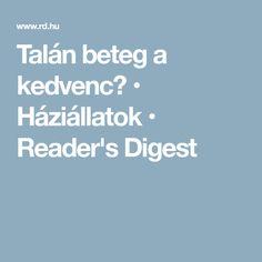 Talán beteg a kedvenc? • Háziállatok • Reader's Digest