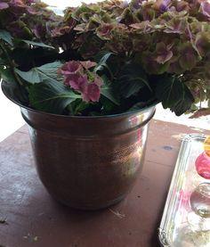 kuparinen kukan suojaruukku . @kooPernu