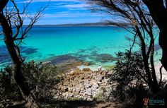 White Sands Walk in Jervis Bay, Australia - about 2.5 hours south of Sydney #AustraliaTravel2Weeks