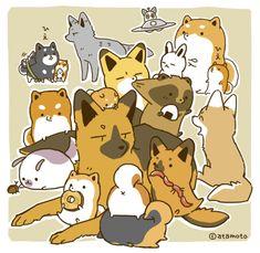 Cute Cartoon Drawings, Cute Animal Drawings, Animal Sketches, Cute Kawaii Animals, Kawaii Cute, Cute Pictures To Draw, Raccoon Drawing, Cute Art, Pretty Art