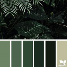 today's inspiration image for { color jungle } is by @mijn.grid ... thank you, Sisilia, for another inspiring #SeedsColor image share!
