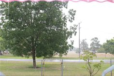Summer country rains.