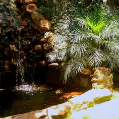 Landscaping, Gardens, Outdoor Decor, Home Decor, Decoration Home, Room Decor, Outdoor Gardens, Yard Landscaping, Landscape Architecture