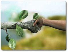 Aprendizaje de Ciencias Naturales: educación ambiental #educacion