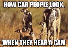 How car people look when they hear a cam