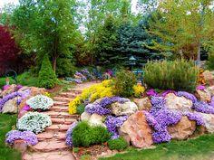 Альпийская горка, как часть ландшафтного дизайна, привлечет к себе внимание в любом саду. Многие хотели бы создать у себя на приусадебном участке альпинарий, но не знают с какой стороны к нему подо…