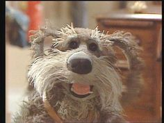 Sprocket :) This is where we got our dog's name from... the dog off the show Fraggle Rock.