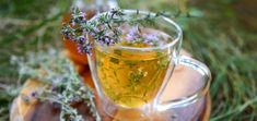 Defeat Lupus, Vertigo, Thyroid Issues And Much More With This Super-Herb! - Happy and Healthy Living Health Benefits Of Thyme, Benefits Of Organic Food, Cold Home Remedies, Herbal Remedies, Healing Herbs, Medicinal Herbs, Nutritional Value Of Food, Teas For Headaches, Tea Recipes