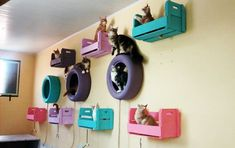 Painted tires, crates and shelvesDamgle cat toys from the ceiling, add a DIY scratching post and your good to go with a gorgeous DIY kitty room x and like OMG! get some yourself some pawtastic adorable cat apparel! Animal Room, Painted Tires, Diy Cat Toys, Cat Playground, Cat Shelves, Cat Enclosure, Cat Condo, Cat Room, Outdoor Cats