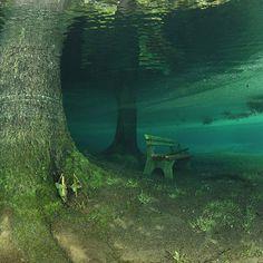 """""""Green Lake"""" – Tragoess, Austria   15 majestuosos lugares bajo el agua que necesitas visitar antes de morir"""