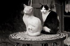 "playing statues, or ""art imitating life""."