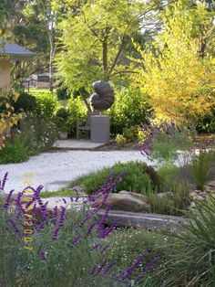 Drought resistant herbaceous perennials used here soften the hard landscaping with feathery and delicate petals and flowers.