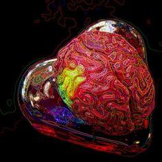 Stiati ca…inima gandeste?