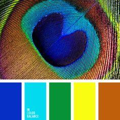 amarillo y marrón, azul oscuro y celeste, azul ultramar, celeste neón, color oro, color verde primavera oscuro, colores de las plumas de pavo real, elección del color, marrón rojizo, selección de colores, verde y azul oscuro, verde y celeste.