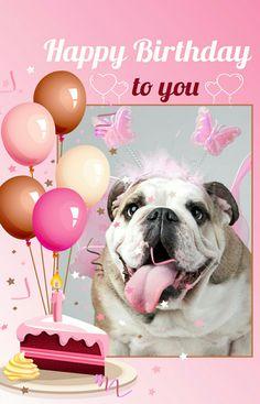 Happy birthday english bulldog