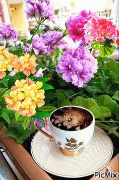 (5) ΚΑΛΗΜΕΡΑ - PicMix Gifs, Good Morning Gif, Tea, Coffee, Beautiful, Nice Asses, Kaffee, Cup Of Coffee, Presents