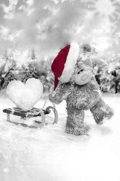 ♥ Tatty Teddy ♥ by EmLynne Tatty Teddy, Christmas In Heaven, 3d Christmas, Xmas, Missing Loved Ones, Missing My Son, Miss Mom, Miss You Dad, Blue Nose Friends