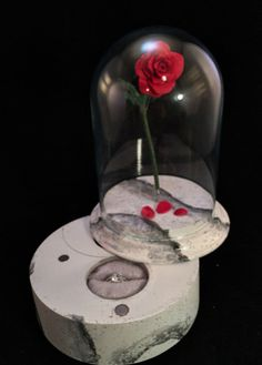 An Enchanted Rose Engagement Ring Box  - Craziest Ways To Present the Ring