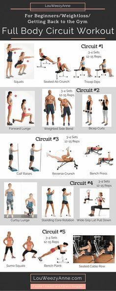 Full Body Workout_For Beginners Full Body Workouts, Full Body Circuit Workout, Beginner Workouts, Hard Workout, Circuit Training, Workout For Beginners, Weight Training, Weight Lifting, Gym Workouts