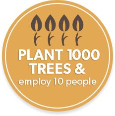 It's Friday morning and I know you just spent at least five bucks on coffee...so, why not donate $10 to plant 1,000 trees and employ 10 people for a day? @eden_reforest #choosegood