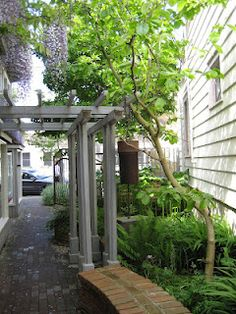 I've been struck by how many of the photographs I've seen of small towns in NZ look similar to our town of Langley on Whidbey Island . Whidbey Island Washington, Our Town, Island Design, Small Towns, Beach House, Pergola, Mid Century, Outdoor Structures, Plants
