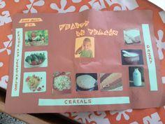 Table Mat - Healthy Food