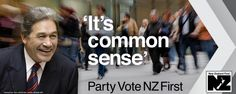 New Zealand First Parliament Election 2014, Kiwi, New Zealand, Reading, Party, Reading Books, Parties