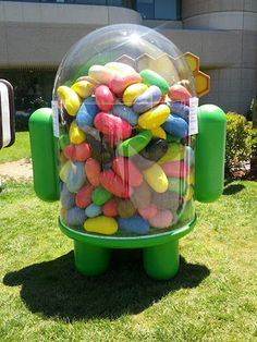 Android Jelly bean at Googleplex