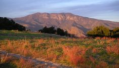 THE TOPA TOPA BLUFFS as viewed from Meher Mount. (Brad Spurr photo.)
