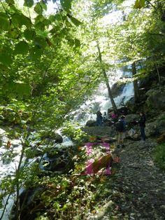 Dark Hollow Falls, Virginia http://www.elizardbreathspeaks.com/2015/12/dark-hollow-falls-virginia.html