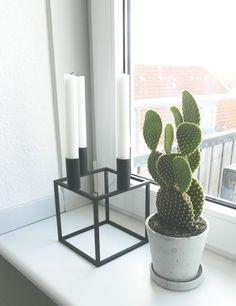 En stikkende sag - Kaktus Cactus - Succulent By Lassen Kubus (http://www.nordicblends.nl/by-lassen-kandelaar-kubus-4-zwart.html)