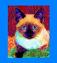 Siamese on Blue