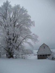 A true Winter's Silence