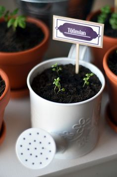 herb gardening.  To order/contact: naturesterrace@gmail.com / 1-574-333-5110 Mention this Board for 10% Off