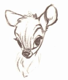 47 Ideas for disney art bambi design reference Disney Character Sketches, Disney Sketches, Disney Drawings, Cute Drawings, Animal Drawings, Drawing Sketches, Disney Characters, Disney Kunst, Arte Disney