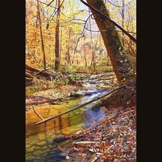 """Cathy Hillegas on Instagram: """"Latest watercolor painting, Autumn On Donaldson Creek, 15x22, watercolor on paper. Now hanging in the Indiana Heritage Arts 42nd Annual…"""""""