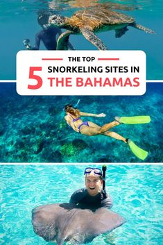 Snorkeling is one of the top things to do in Bahamas. From marine life, to caves and shipwrecks. Explore the 700 islands that make up the Bahamas for the ultimate Bahamas Vacation. A Bucket List activity, snorkeling is a great way to encounter green turtles, sharks, stingrays, fish, conch and many other exotic wildlife found in the Bahamas.