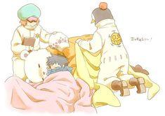 One Piece, Trafalgar Law, Bepo, Penguin, Shachi