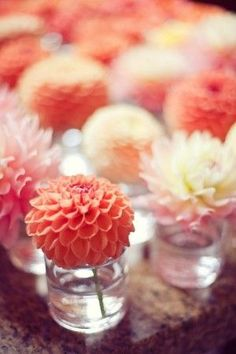 Single dahlia in a votive holder (buy votives (cheap) at Ikea or the dollar store -- any single bloom in its own vase can look bright and beautiful to decorate a dinner party Wedding Bells, Our Wedding, Wedding Flowers, Dream Wedding, Wedding Ideas, Wedding Table, Wedding Coral, Summer Wedding, Rustic Wedding