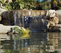 build your own waterfall pond pondless design how to small in door water falls with adorable gles bamboo pattern and of images interior living room home apartment Rock Waterfall, Garden Waterfall, Stone Landscaping, Landscaping With Rocks, Outdoor Waterfalls, Building A Pond, Natural Pond, Natural Stones, Backyard Water Feature
