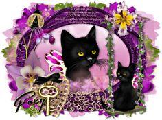 Melissa Dawn Kittens | Melissa Dawn Kitten Snag Tags