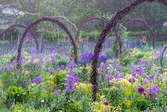Gardens   Landscape Photography   Rob Cardillo Photography