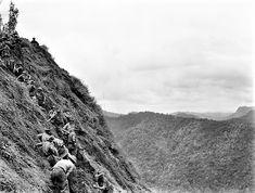 History Images, Modern Warfare, Borneo, Papua New Guinea, Vietnam War, Military History, Shaggy, World War Two, Marines