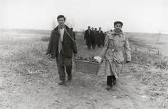 Hungarians leaving Hungary during/after Hungarian Uprising Oct./Nov. 1956