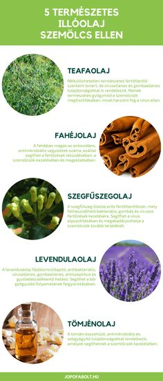Doterra, Healthy Lifestyle, Therapy, Fruit, Healthy Life