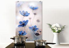Spritzschutz Disher - Blue Cosmos von wall-art.de