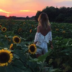 Run thru a flower patch #sunflowers