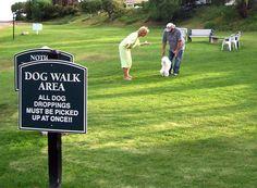 Dog Park Etiquette, Dog, Cat and other Pet Friendly Travel Articles
