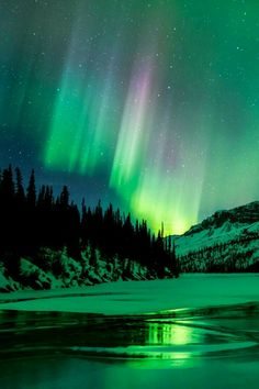 Photography Nature Sky Aurora Borealis Ideas For 2019 photography 712202128552805871 Aurora Borealis, Beautiful Sky, Beautiful Landscapes, Landscape Photography, Nature Photography, Scenic Photography, Night Photography, Landscape Photos, Northen Lights