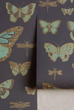 Papier peint Lepidoptera
